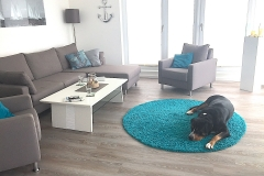 Geräumige-Ferienwohnung-mit-Hund