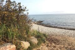 Strand-im-Herbst