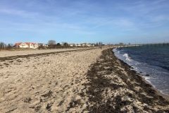 Strand-pelzerhaken-vorsaison