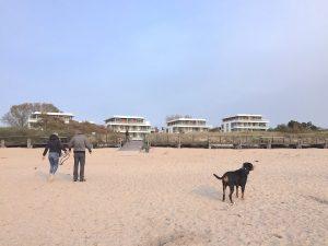 Südkap Pelzerhaken mit Hund